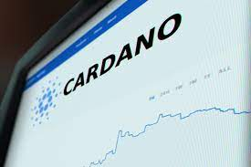 This image has an empty alt attribute; its file name is cardano.jpg